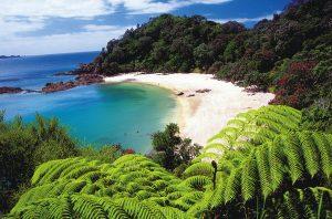 Northalnd-NZ