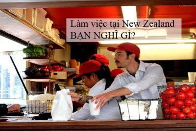 làm việc ở New Zealand