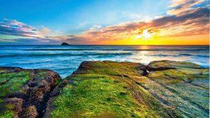 cảm nhận New Zealand