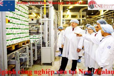 ngành công nghiệp sữa tại New Zealand